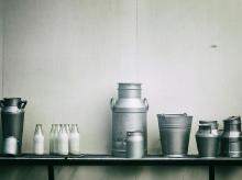 Milk, products, dairy