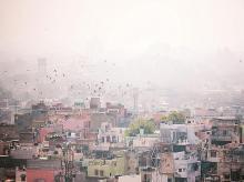 India, city, town, slums, urban