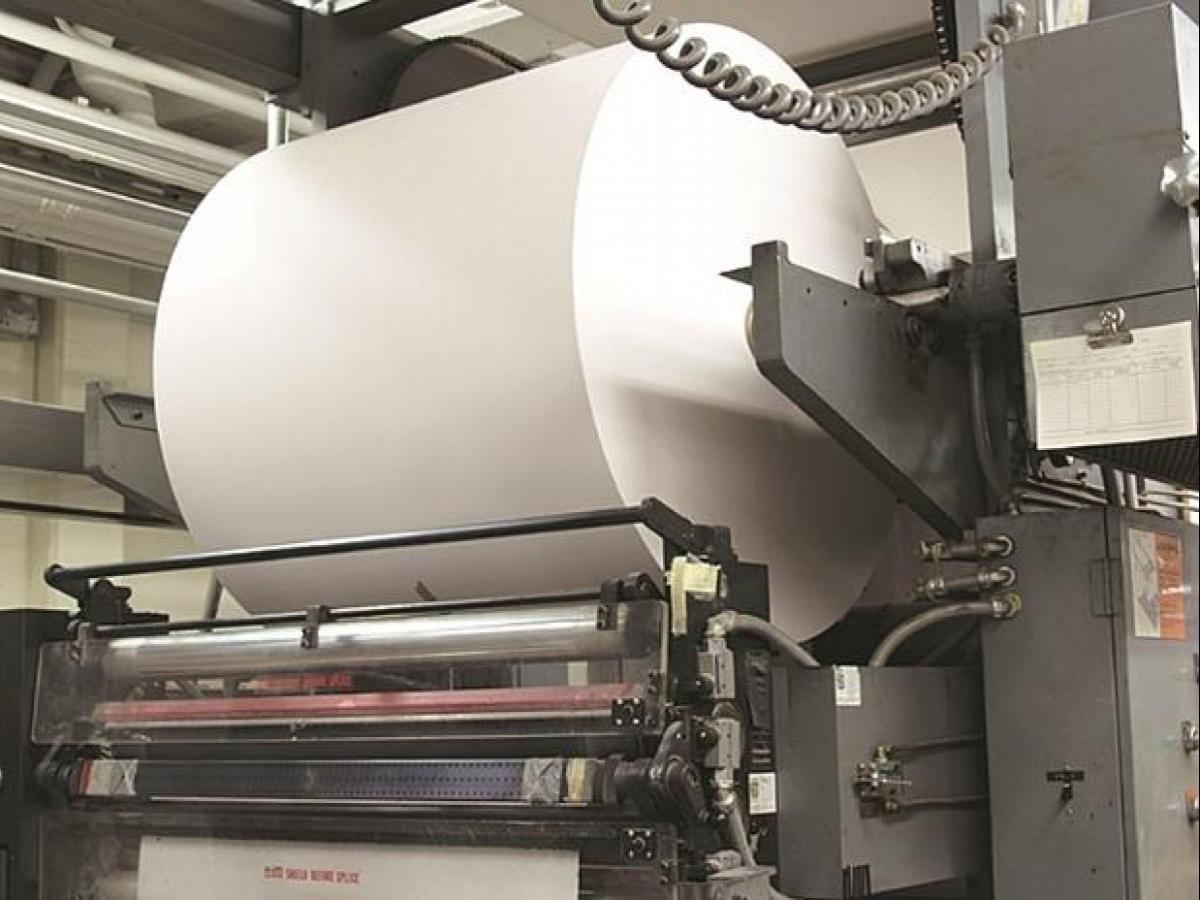 Stocks of paper companies rise by up to 89% on bumper June quarter
