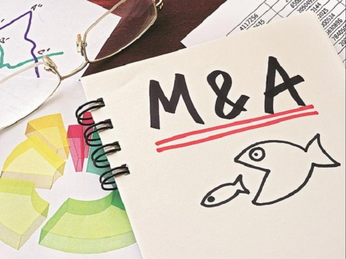 M&A deals decline in Q1CY19, PE activity remains robust: EY