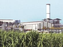 The state's sugar mills are idle for six to seven months a year, after cane crushing gets over