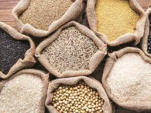 pulses, grains, farm produce