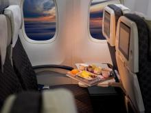 flight, airline, in-flight meal, meal, non-veg, nonveg food, plane
