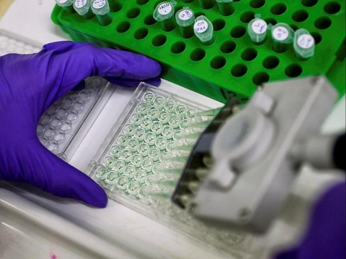Indian pharma firms see fall in rate of final product
