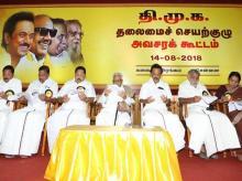 DMK,Stalin,DMK executive committee meeting
