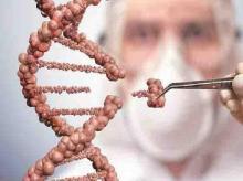 gene, evolution