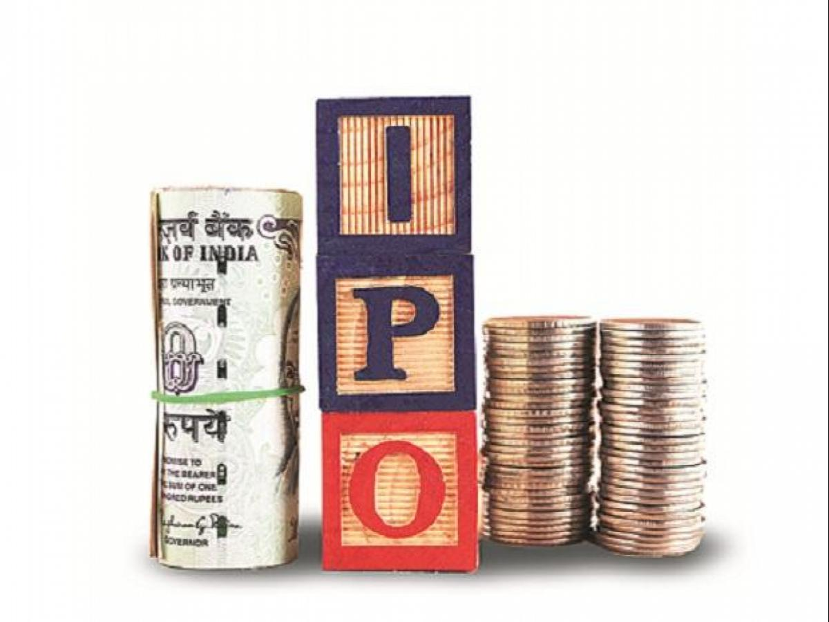 Indian firms raise Rs 6,482 cr through 14 IPOs in first