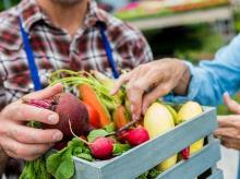 barter, barter system, fruits