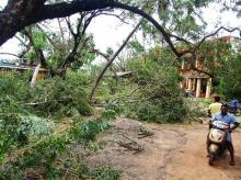 A view of the damage caused by cyclone 'Gaja', after it hit Velankanni, in Nagapattinam district of Tamil Nadu, Friday | Photo: PTI