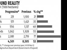 Rabi sowing in Gujarat likely to fall by half; crop production 60% lower