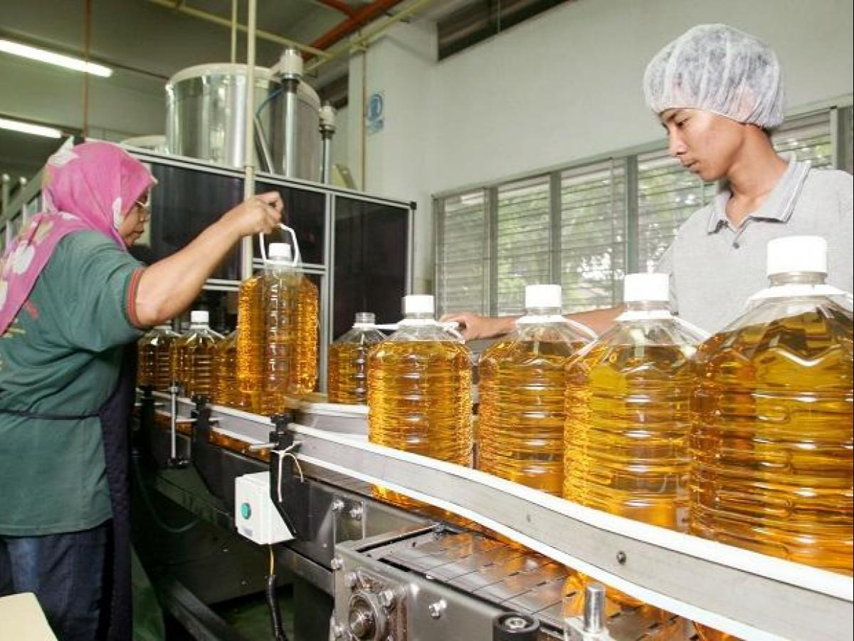 Edible oil makers cut prices by up to Rs 2/litre | Business