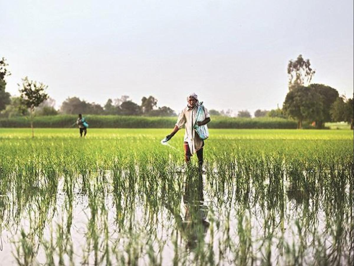 Saudi, UAE may cut Indian agri imports on quality issues, $2 6 bn at