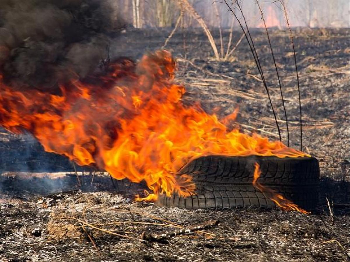 Not just plastic & air, India has one more pollution crisis: Burning