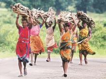 Supreme Court stays Feb 13 order to evict nearly 1.89 million tribals