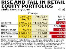 Domestic retail investors take 30% hit as equity markets decline