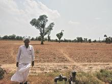 drought, monsoon, agriculture