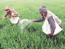 Fertiliser movement through coastal shipping now eligible for subsidy