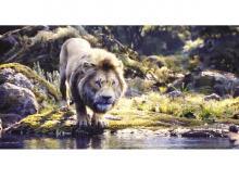 Disney rides on nostalgia around The Lion King to bolster merchandise sales