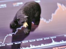 bear, markets