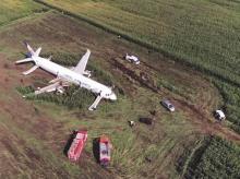 Plane lands belly down in cornfield | Photo: AP/PTI