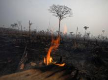 A tract of Amazon jungle burns in Boca do Acre, Amazonas state, Brazil August 24, 2019 | Photo: Reuters