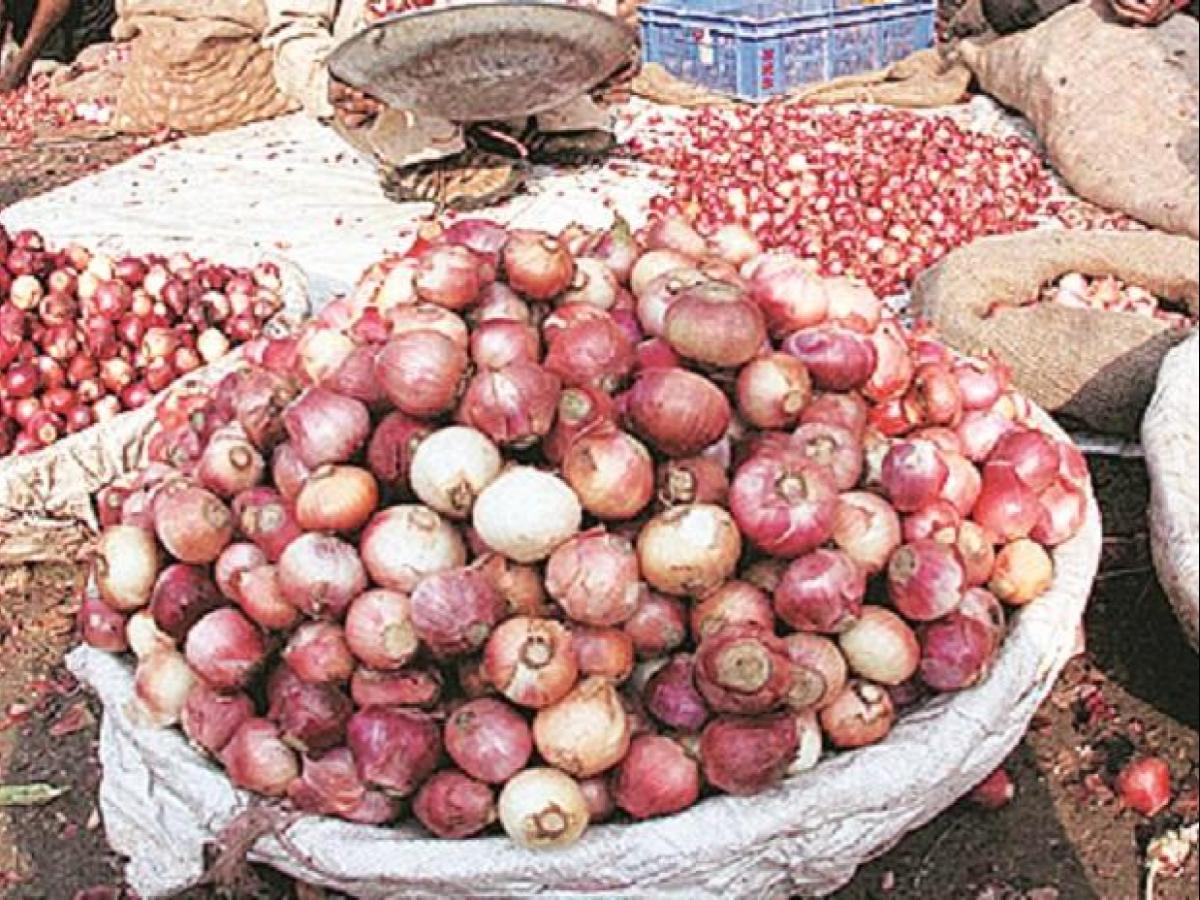 Centre bans onion export, imposes stock holding limit to check price rise |  Business Standard News