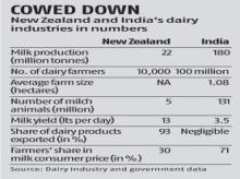 Explained: Why Indian dairy farmers oppose RCEP trade agreement