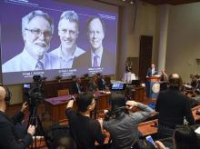 Stockholm: Thomas Perlmann, far right, Secretary-General of the Nobel Committee announces the 2019 Nobel laureates in Physiology or Medicine during a news conference in Stockholm, Sweden, Monday Oct. 7, 2019. The prize has been awarded to scientists,