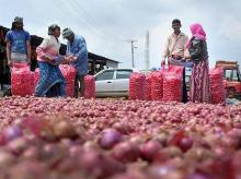 Chikmagalur: Vendors dry onions under the sun after rain subsided, in Chikmagalur, Friday, Oct. 11, 2019. (PTI Photo) (