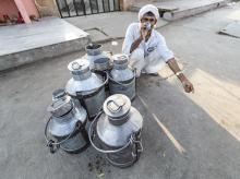 Milk man in India. Photo: Shutterstock