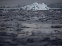 Small chunks of ice float on the water near Fournier Bay, Antarctica