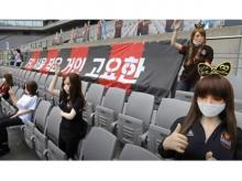 Sex dolls used as spectator by FC Seoul in South Korea football league