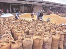 apmc, farmers, farm, agriculture, production, warehouse, storage, procurement, MSP