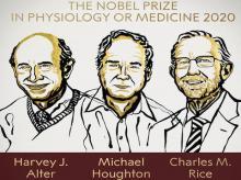 Nobel, Nobel Prize