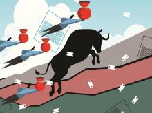 Market trend is in the favour of the bulls