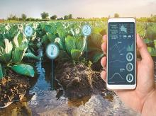 crop management, water wastage, agritech, agriculture, farmers, farmers, startups, tech, IoT, data, internet