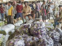 A vegetable vendor sits among bags of eggplant at Azadpur Mandi as farmers' protest entered the fifth day, in New Delhi on Tuesday, June 05, 2018.