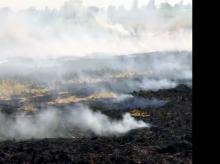 Farmer burns stubble